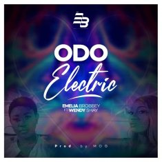 Odo Electric